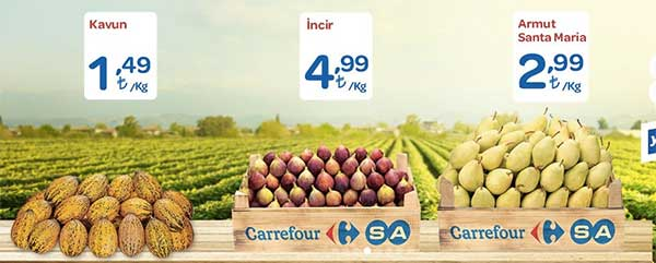 carrefour-insert-1